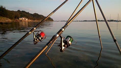 Quels sont les meilleurs accessoires pêche