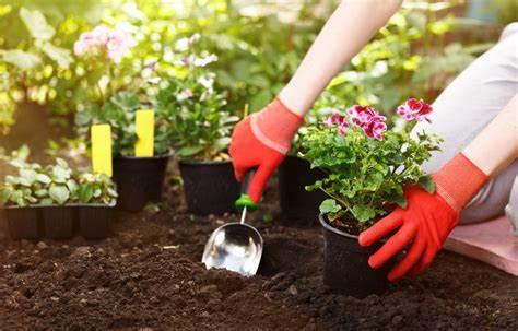 Quels sont les meilleurs accessoires jardinage