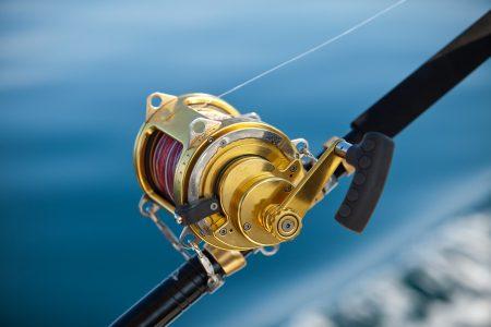 L'équipement indispensable pour débuter la pêche à la carpe